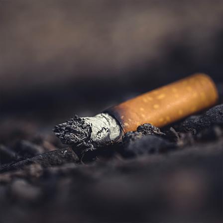 cigarette pollution vignette